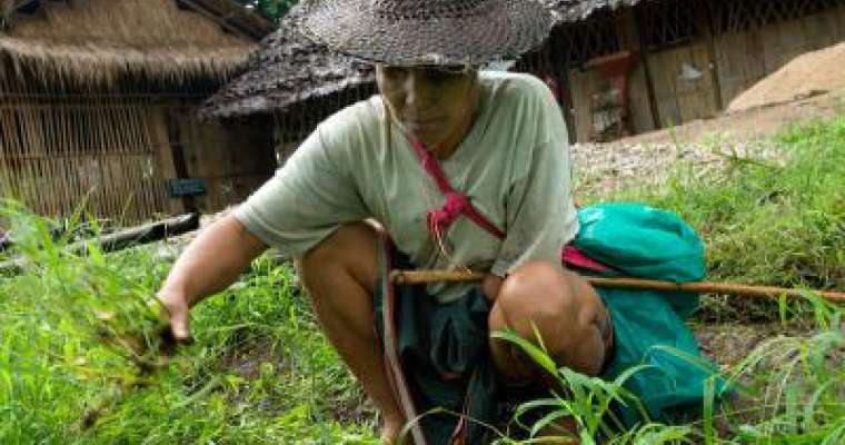 Blind Karen farmer harvests dignity as well
